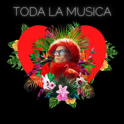 MUSIC STORE DOCTOR FLAMINGO TIENDA
